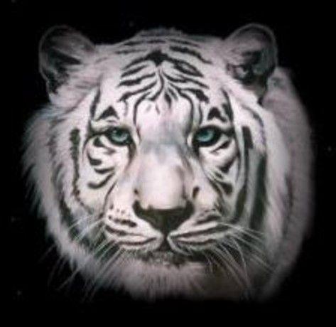 Tigre blanc - Tete de tigre dessin facile ...